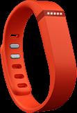 fitbit gadgets online