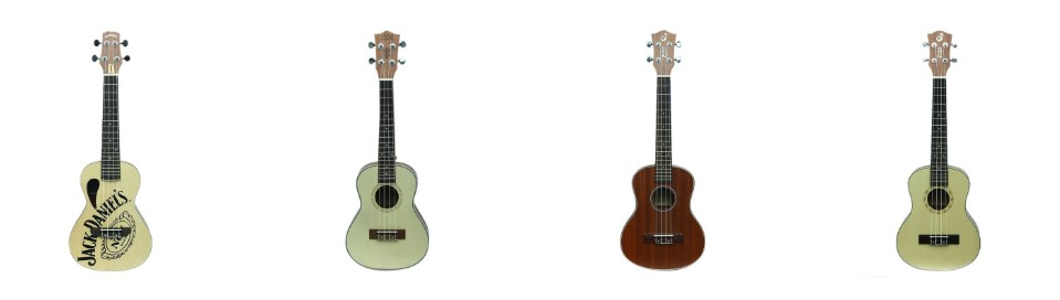 ukulele price in bangladesh
