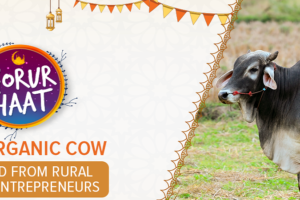 shop organic cow from daraz.com.bd