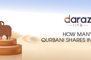 Sheep Qurbani Share